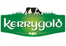Nigeria: Ornua opens new dairy facility