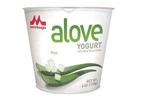 USA: Morinaga enters yoghurt category